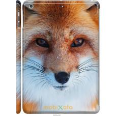 Чехол на iPad 5 (Air) Рыжая лисица