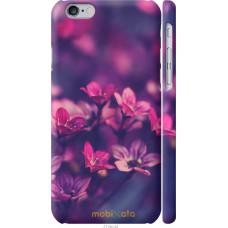 Чехол на iPhone 6 Весенние цветочки