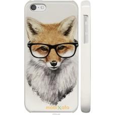Чехол на iPhone 5c 'Ученый лис