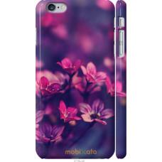 Чехол на iPhone 6s Plus Весенние цветочки