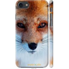 Чехол на iPhone 7 Рыжая лисица