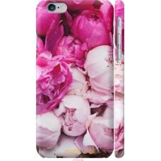 Чехол на iPhone 6 Розовые цветы