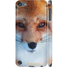 Чехол на iPod Touch 5 Рыжая лисица