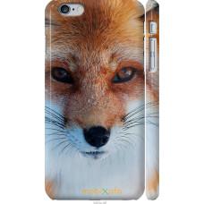 Чехол на iPhone 6 Plus Рыжая лисица