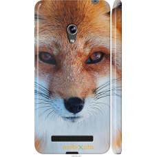 Чехол на Asus Zenfone 5 Рыжая лисица