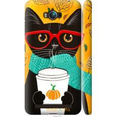 Чехол на Asus ZenFone Max ZC550KL Осенний кот