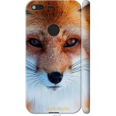 Чехол на Google Pixel Рыжая лисица