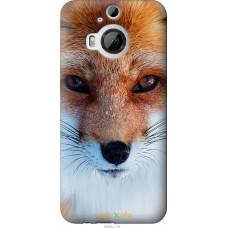 Чехол на HTC One M9 Plus Рыжая лисица