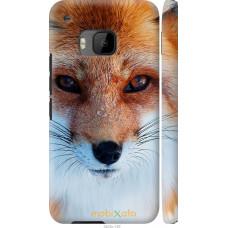 Чехол на HTC One M9 Рыжая лисица