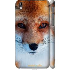 Чехол на HTC Desire 816 Рыжая лисица