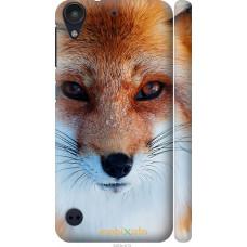 Чехол на HTC Desire 530 Рыжая лисица