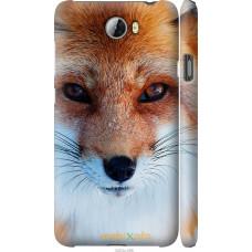 Чехол на Huawei Y5 II Рыжая лисица