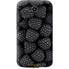 Чехол на Huawei Ascend Y600 Черная ежевика
