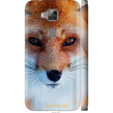 Чехол на Huawei G8 Рыжая лисица