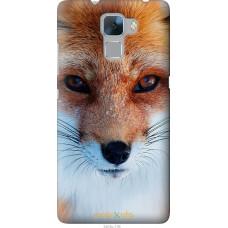 Чехол на Huawei Honor 7 Рыжая лисица