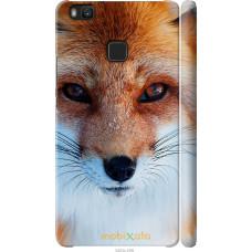 Чехол на Huawei P9 Lite Рыжая лисица