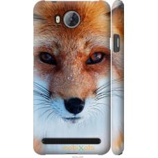 Чехол на Huawei Y3II | Y3 2 Рыжая лисица