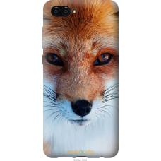 Чехол на Huawei Nova 2S Рыжая лисица