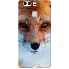 Чехол на Huawei P9 Plus Рыжая лисица