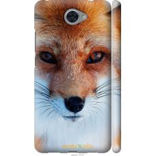 Чехол на Huawei Y7 2017 Рыжая лисица