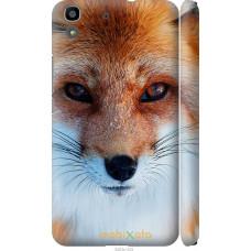 Чехол на Huawei Y6 Рыжая лисица