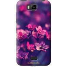 Чехол на Huawei Ascend Y5C Весенние цветочки