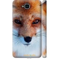 Чехол на Huawei Y6 Pro Рыжая лисица