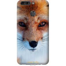 Чехол на Huawei Honor V9 | Honor 8 Pro Рыжая лисица