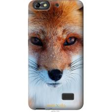Чехол на Huawei Honor 4C Рыжая лисица