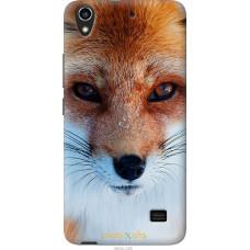 Чехол на Huawei G620S Рыжая лисица