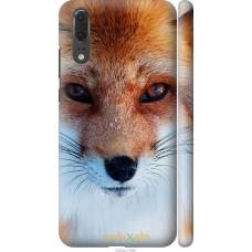 Чехол на Huawei P20 Рыжая лисица