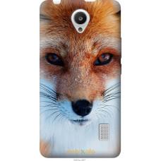 Чехол на Huawei Y635 Рыжая лисица