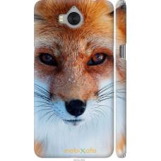 Чехол на Huawei Y5 2017 Рыжая лисица