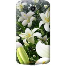 Чехол на Huawei Ascend Y600 Лилии белые