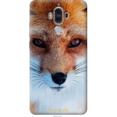 Чехол на Huawei Mate 9 Рыжая лисица