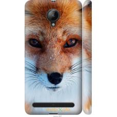 Чехол на Lenovo Vibe C2 Рыжая лисица