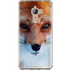 Чехол на LeTV Max X900 Рыжая лисица