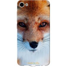 Чехол на Meizu U10 Рыжая лисица