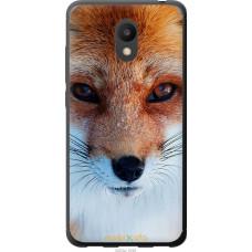 Чехол на Meizu M6 Рыжая лисица