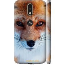 Чехол на Motorola MOTO G4 Рыжая лисица