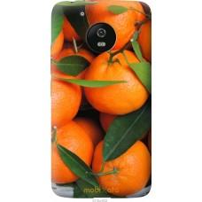 Чехол на Motorola Moto G5 Мандарины