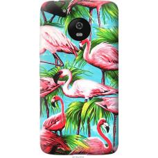 Чехол на Motorola Moto G5 Tropical background