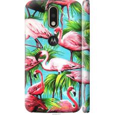 Чехол на Motorola MOTO G4 Tropical background