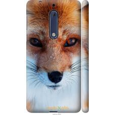 Чехол на Nokia 5 Рыжая лисица