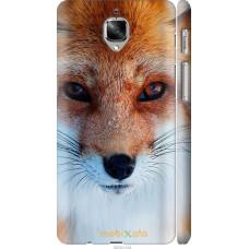 Чехол на OnePlus 3 Рыжая лисица