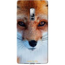 Чехол на OnePlus 2 Рыжая лисица