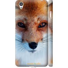 Чехол на OnePlus X Рыжая лисица