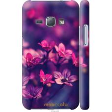 Чехол на Samsung Galaxy J1 (2016) Duos J120H Весенние цветоч