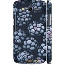Чехол на Samsung Galaxy Grand 2 G7102 Морозная ежевика
