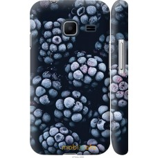 Чехол на Samsung Galaxy J1 Mini J105H Морозная ежевика